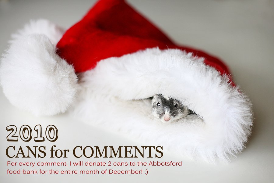 Cans for Comments | Giving to the Abbotsford Food Bank