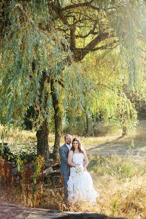 willow tree wedding photo