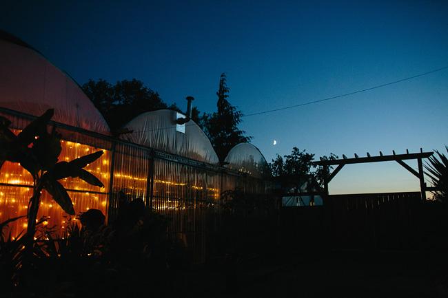 woodbridge-ponds-wedding-abbotsford