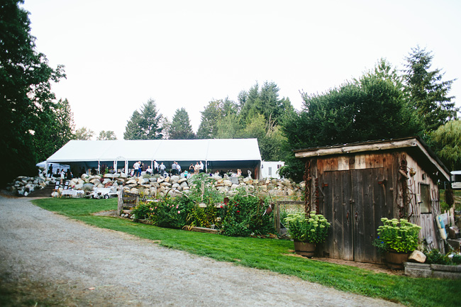 Langley-Backyard-Farm-Wedding028
