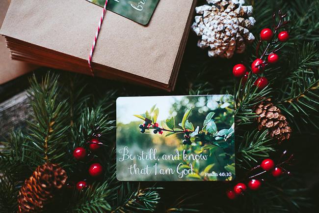 Kitten-Christmas-Card-Behind-the-Scenes027