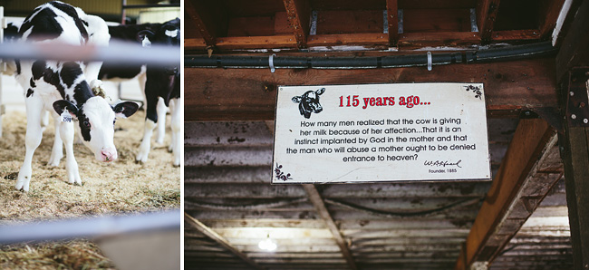 008-abbotsford-farm-engagement-photos-