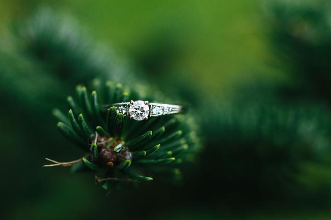 demi-rob-abbotsford-engagement-photos010