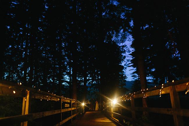 Nightshot at Whonnock Lake