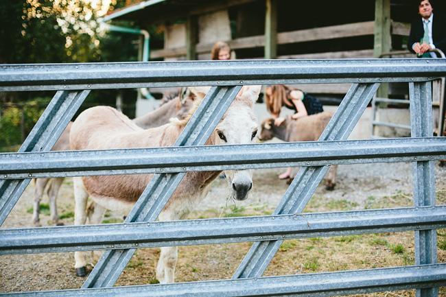 Langley-Backyard-Farm-Wedding027