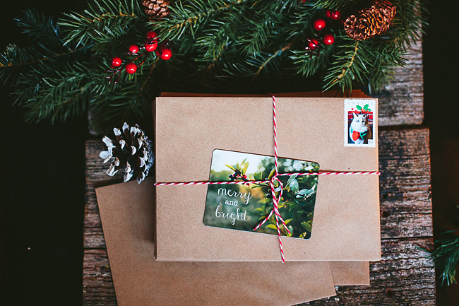 Kitten-Christmas-Card-Behind-the-Scenes030